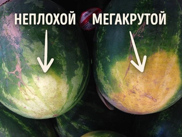 Как выбирать арбуз? 5 секретов самого вкусного и спелого арбуза